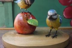 birds-ipswich-1
